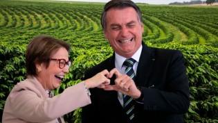 Vitória do Brasil: presidente Bolsonaro destina R$ 251,22 bilhões para produtores rurais