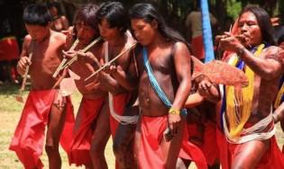 Liberdade antes que tardia: Os indígenas como principais vítimas das ONGs milionárias instaladas na Amazônia