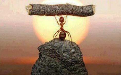 Ser forte ou ser fraco, e o tempo de resistir