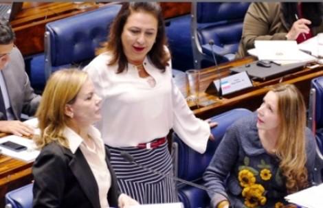 Cotas para representação feminina no Legislativo mais uma vergonhosa aberração