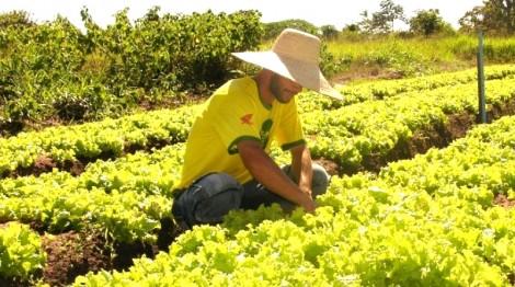 Agricultor, com extrema humildade, faz protesto que todas às pessoas da cidade deveriam refletir (veja o vídeo)