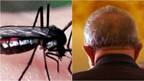 Quem é mais letal para o cidadão brasileiro, o mosquito Haemagogus ou o político Demagogo?