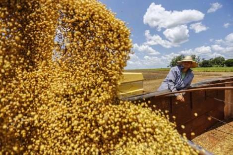 "Para desespero da ""turma do mal"", China aumenta a demanda da soja brasileira"