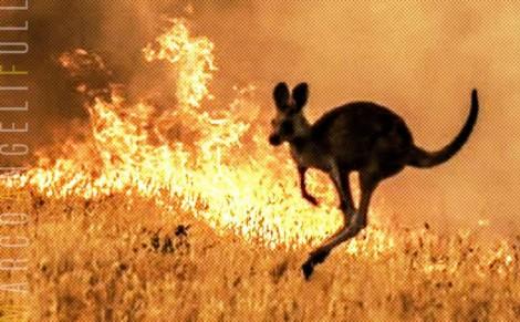 Fogo, morte e devastação na Austrália: o silêncio dos hipócritas