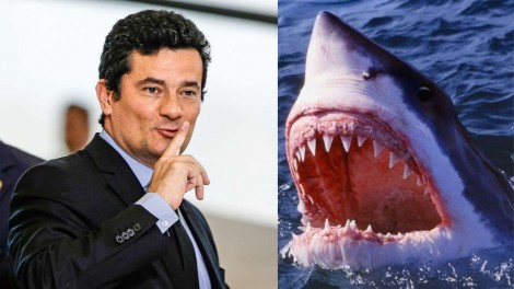 O ministro Moro e a tática dos tubarões