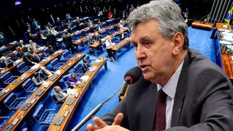 """""""A CPI só tem um interesse: que o presidente Bolsonaro fique sangrando e não se eleja ano que vem"""", afirma senador (veja o vídeo)"""