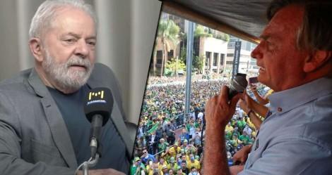 Pesquisas: Tristemente, há sempre algo de podre no reino do Pau-Brasil
