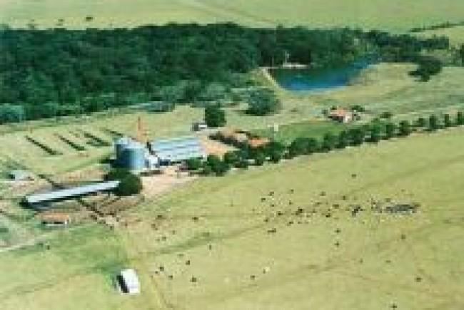 Fazenda São Gabriel