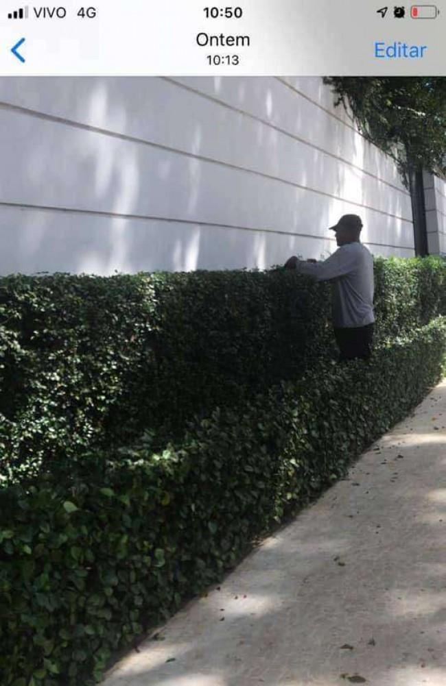 Jardineiro da mansão do governador. Fora do isolamento social
