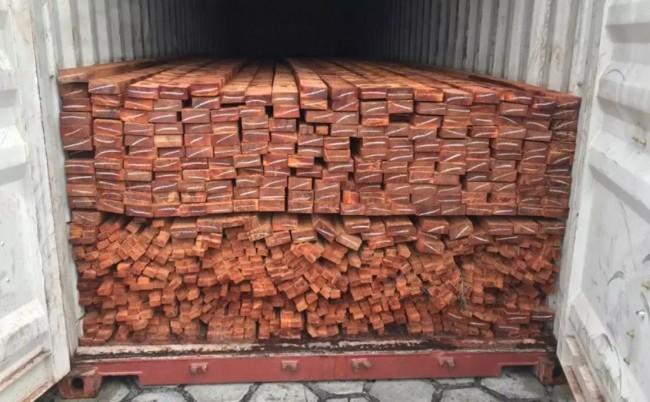 Alguns carregamentos de madeira ilegal encontrados, já em Manaus - Foto: Divulgação/PF