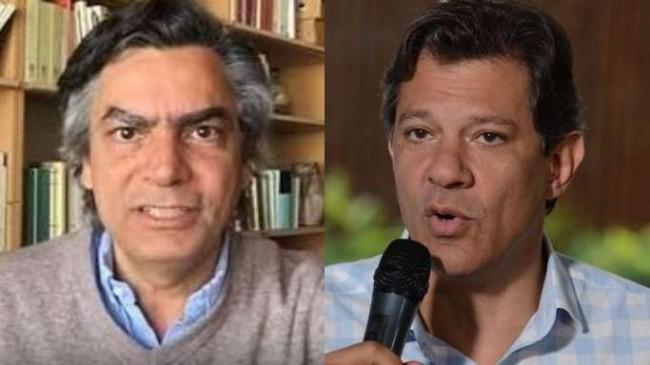 Fotomontagem: Diogo Mainardi e Haddad, o poste de Lula