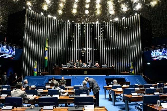 Plenário - Reprodução internet