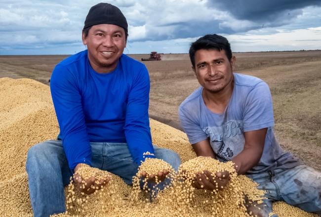 Indígenas na agricultura – Divulgação Funai